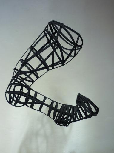 Leg, Tia-Calli Borlase, 2011. Image © Tia-Calli Borlase
